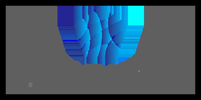 MIND Impact Consulting